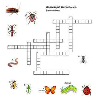 Russian Spelling Worksheet 18 pg of fun activities, crossword, word search