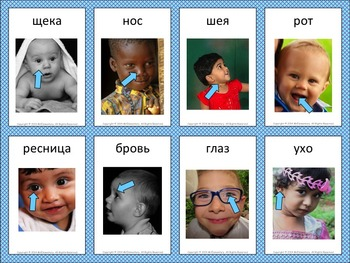 Russian Flashcard and Word Wall Bundle