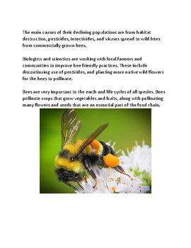 Rusty Patched Bumblebee listed as endangered species - lesson facts questions