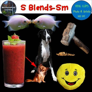 S Blends Clip Art SM Blend Real Clips Digital Stickers Photo & Artistic