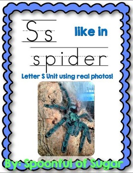 S Like In Spider (Letter S Unit Using Real Photos!)