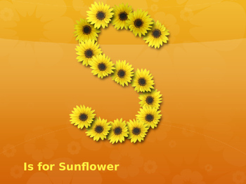 S is For Sunflowr --A Kansas Alphabet  Powerpoint presentation