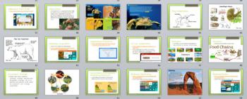 S4L1 Ecosystems S4P2 GSE 2018 Unit *Perfect for GoogleClassroom