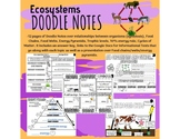 Ecosystems Doodle Notes