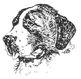 SAINT BERNARD RESCUE DOGS: Informational Text + Read Comprehension 6 MC Questi