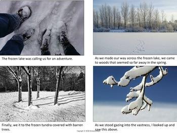 ELA Resources Grab Bag: Winter Texts, Writing Strategy, Photos,  + Past Tense LP