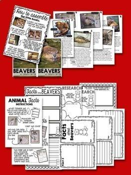 SALMON - nonfiction animal research