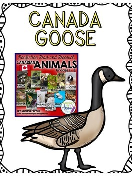 CANADA GOOSE - nonfiction animal research