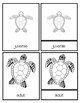 SAMPLE Life Cycle of a Sea Turtle 3 part cards