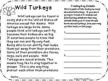 SAMPLE NON-FICTION WILD TURKEYS CLOSE READ GRADES 1 and 2