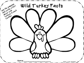NONFICTION WILD TURKEYS CLOSE READ GRADES 1 and 2 SAMPLE