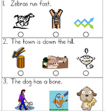 SAT 10 Kindergarten Sentence Reading 2
