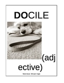 SAT words - Card 1 (ESL Middle/High/Adult) Common Core