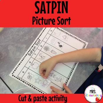 SATPIN Picture Sort Activity