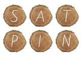 SATPIN Segmenting & Blending Instruction Cards