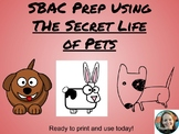 "SBAC Prep Using ""The Secret Life of Pets"" Movie"