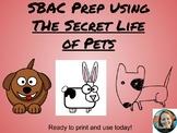 "SBAC Prep Using ""The Secret Life of Pets"" Movie"