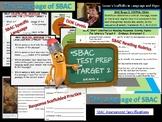 SBAC Test Prep: Determine a Message