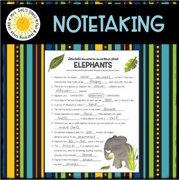 SCHEMA BUILDERS - Elephants