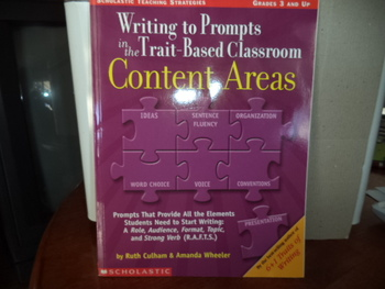 SCHOLASTIC TEACHING STRATEGIES   0-439-55685-6