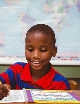 SCHOOL LICENSE – 10 TEACHERS – Year Long Program – NOVEL STUDY GUIDES Grades 3-4