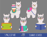 SCHOOL LLAMAS clipart, LLAMAS, school, teachers, commercia