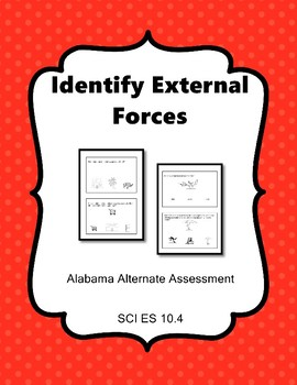 SCI ES 10.4  Identify External Forces New AAA Extended Standards