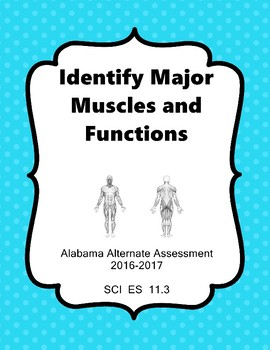 SCI ES 11.3 Identify Location and Function of Muscles AAA Extended Standards