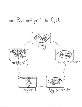"SCIENCE: "" A Butterfly's Life Cycle"" for Young Artists"