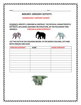 SCIENCE ACTIVITY: COMPARE THE AFRICAN & ASIAN ELEPHANT