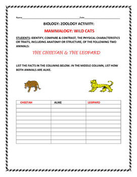 SCIENCE ACTIVITY: COMPARE/CONTRAST: THE CHEETAH & THE LEOPARD