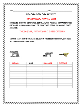 SCIENCE ACTIVITY: COMPARE THREE WILD CATS: THE JAGUAR,  LEOPARD, AND CHEETAH