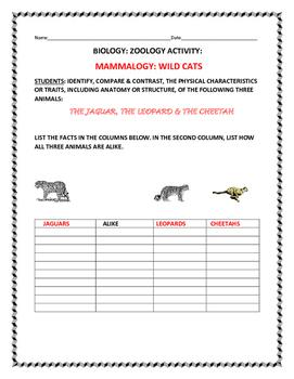 SCIENCE ACTIVITY: COMPARE THREE WILD CATS: THE JAGUAR,  LE