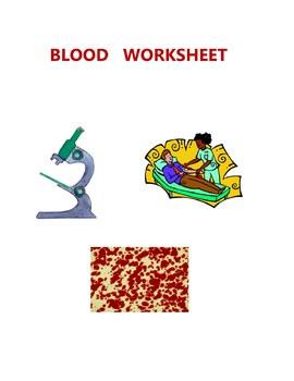 SCIENCE  BLOOD  WORKSHEET - ELEMENTARY  MIDDLE  HIGH - BIOLOGY