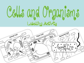 SCIENCE CELL LABELLING