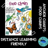 SCIENCE ECOLOGY DOODLE SCAFFOLDED NOTES/ANCHOR CHART: FOOD CHAINS