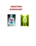 SCIENCE HUMAN BODY DIGESTION WORKSHEET - BIOLOGY ELEMENTARY MIDDLE HIGH