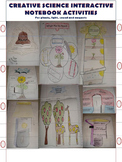 SCIENCE INTERACTIVE NOTEBOOK ACTIVITIES For plants, light, sound and magnets