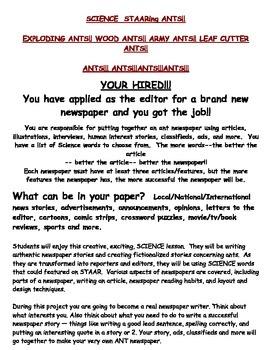 SCIENCE  STAARing ANTS!!  Create newspaper on ants or othe