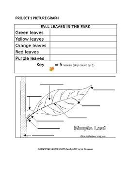 SCIENCE Take Home Project on Fall Leaves 12 pages/3 project options