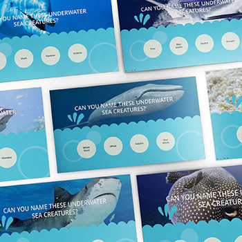 SCIENCE: Ultimate Ocean and Marine Life Challenge - Intera