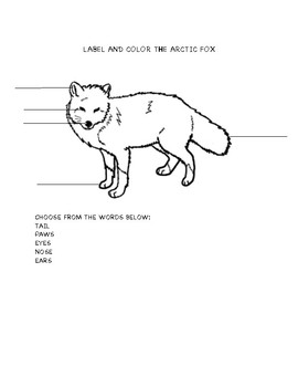 SCIENCE WORKSHEETS LABELLING ANIMALS