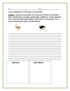 SCIENCE WRITING/ RESEARCH PROMPT: THE EMU & THE OSTRICH