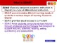 SDAIE Strategies for teachers or how to help your ELL students in every subject