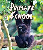 Primate School