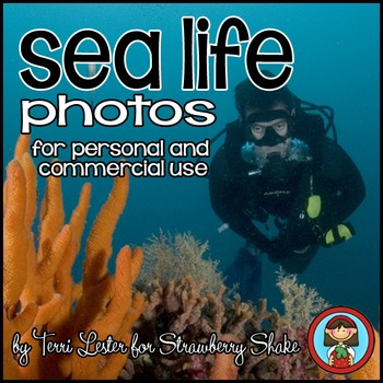 Photos Photographs SEA LIFE! Science and Nature for Personal and Commercial Use