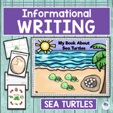 SEA TURTLES LIFE CYCLE - An Oviparous Animal Unit