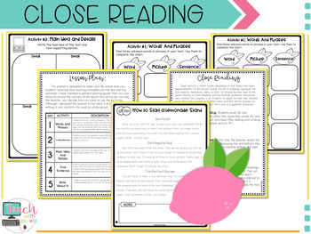 2nd Grade MAIN IDEA Close Reading Passages and Questions