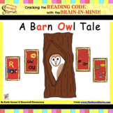 """Guided Reading Decodable Reader - """"A Barn Owl Tale""""   Secret Stories®"""