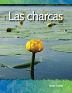 Las charcas (Ponds)